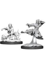 WizKids Dungeons & Dragons Nolzur`s Marvelous Unpainted Miniatures: W11 Female Human Monk