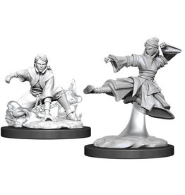 WizKids Dungeons & Dragons Nolzur`s Marvelous Unpainted Miniatures: W11 Female Human Monk