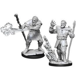 WizKids Dungeons & Dragons Nolzur`s Marvelous Unpainted Miniatures: W11 Male Firbolg Druid