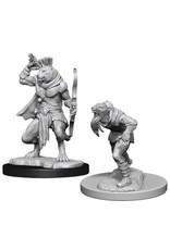 WizKids Dungeons & Dragons Nolzur`s Marvelous Unpainted Miniatures: W11 Wererat & Weretiger