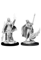 WizKids Pathfinder Deep Cuts Unpainted Miniatures: W11 Female Human Oracle (Magic User)