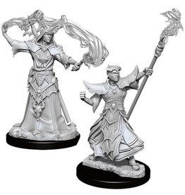 WizKids Pathfinder Deep Cuts Unpainted Miniatures: W11 Male Human Sorcerer