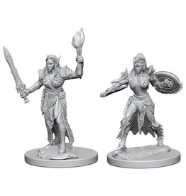 WizKids Pathfinder Deep Cuts Unpainted Miniatures: W1 Elf Female Fighter