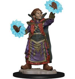 WizKids Wardlings: W1 Boy Wizard & Imp