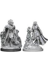 WizKids Dungeons & Dragons Nolzur`s Marvelous Unpainted Miniatures: W12 Female Tiefling Sorcerer