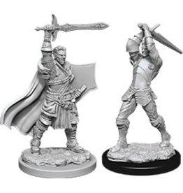 WizKids Dungeons & Dragons Nolzur`s Marvelous Unpainted Miniatures: W12 Male Human Paladin