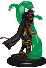 WizKids Dungeons & Dragons Icons of the Realms Premium Figures: W1 Tiefling Female Sorcerer