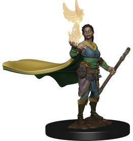 WizKids Dungeons & Dragons Icons of the Realms Premium Figures: W1 Elf Female Druid