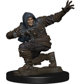 WizKids Pathfinder Battles: Premium Painted Figure - W1 Human Rogue Male