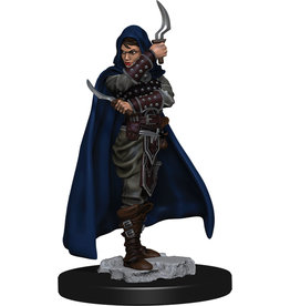 WizKids Pathfinder Battles: Premium Painted Figure - W1 Human Rogue Female