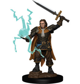 WizKids Pathfinder Battles: Premium Painted Figure - W1 Human Cleric Male