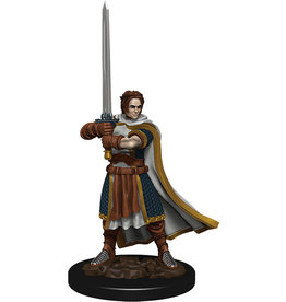 WizKids Dungeons & Dragons Fantasy Miniatures: Icons of the Realms Premium Figures W4 Human Cleric Male