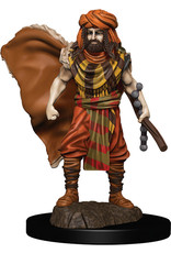 WizKids Dungeons & Dragons Fantasy Miniatures: Icons of the Realms Premium Figures W4 Human Druid Male