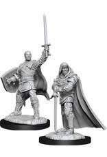 WizKids Dungeons & Dragons Nolzur`s Marvelous Unpainted Miniatures: W13 Human Paladin Male