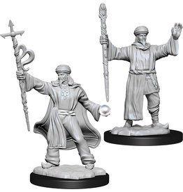 WizKids Dungeons & Dragons Nolzur`s Marvelous Unpainted Miniatures: W13 Human Wizard Male