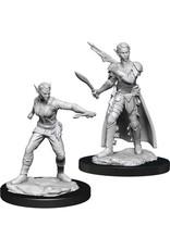 WizKids Dungeons & Dragons Nolzur`s Marvelous Unpainted Miniatures: W13 Shifter Rogue Female