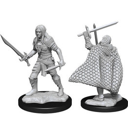 WizKids Pathfinder Deep Cuts Unpainted Miniatures: W13 Elf Fighter Male