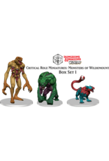 WizKids Dungeons & Dragons Critical Role Miniatures Monsters of Wildemount Set 1