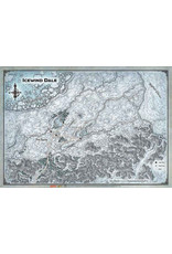 Gale Force 9 Dungeons and Dragons RPG: Icewind Dale Map (30in x 21in)