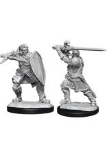 WizKids Dungeons & Dragons Nolzur`s Marvelous Unpainted Miniatures: W14 Human Paladin Male