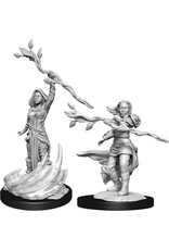 WizKids Dungeons & Dragons Nolzur`s Marvelous Unpainted Miniatures: W14 Human Druid Female