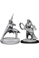 WizKids Dungeons & Dragons Nolzur`s Marvelous Unpainted Miniatures: W14 Human Monk Female