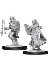 WizKids Dungeons & Dragons Nolzur`s Marvelous Unpainted Miniatures: W14 Kalashtar Cleric Female