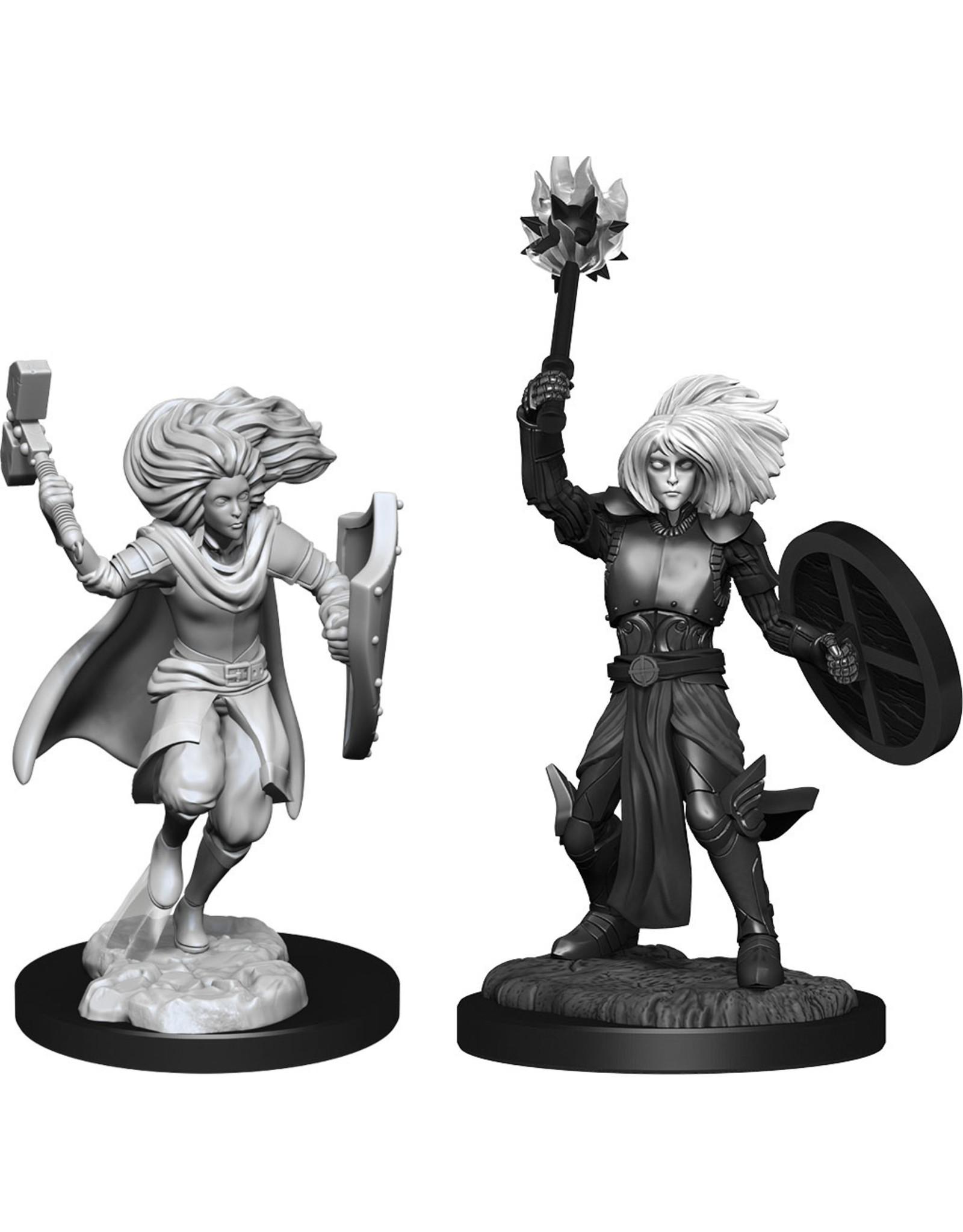 WizKids Dungeons & Dragons Nolzur`s Marvelous Unpainted Miniatures: W14 Changeling Cleric Male