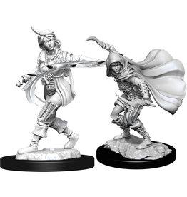 WizKids Pathfinder Deep Cuts Unpainted Miniatures: W14 Human Rogue Female