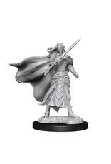 WizKids Magic the Gathering Unpainted Miniatures: W14 Elf Fighter & Elf Cleric