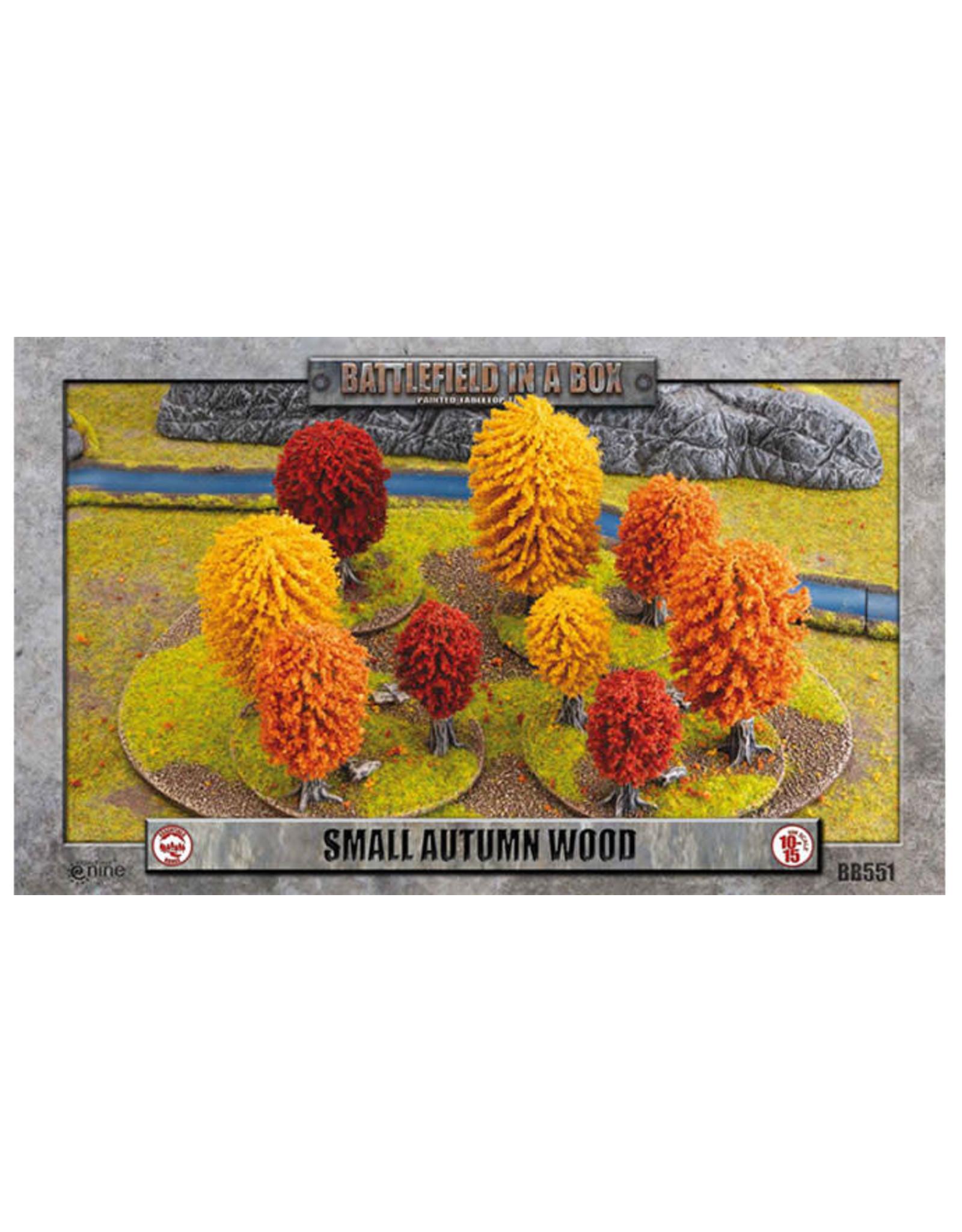 Small Autumn Wood