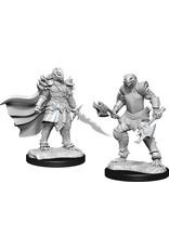 WizKids Dungeons & Dragons Nolzur`s Marvelous Unpainted Miniatures: W15 Dragonborn Fighter Female