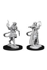 WizKids Dungeons & Dragons Nolzur`s Marvelous Unpainted Miniatures: W15 Tiefling Sorcerer Female