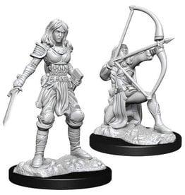 WizKids Pathfinder Deep Cuts Unpainted Miniatures: W15 Human Fighter Female