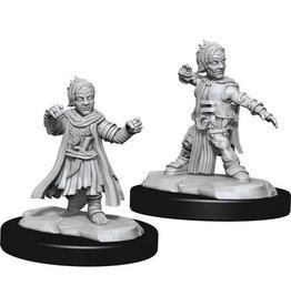 WizKids Pathfinder Deep Cuts Unpainted Miniatures: W15 Halfling Monk Male