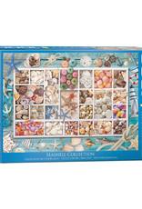 EuroGraphics 1000pc Seashell Collection