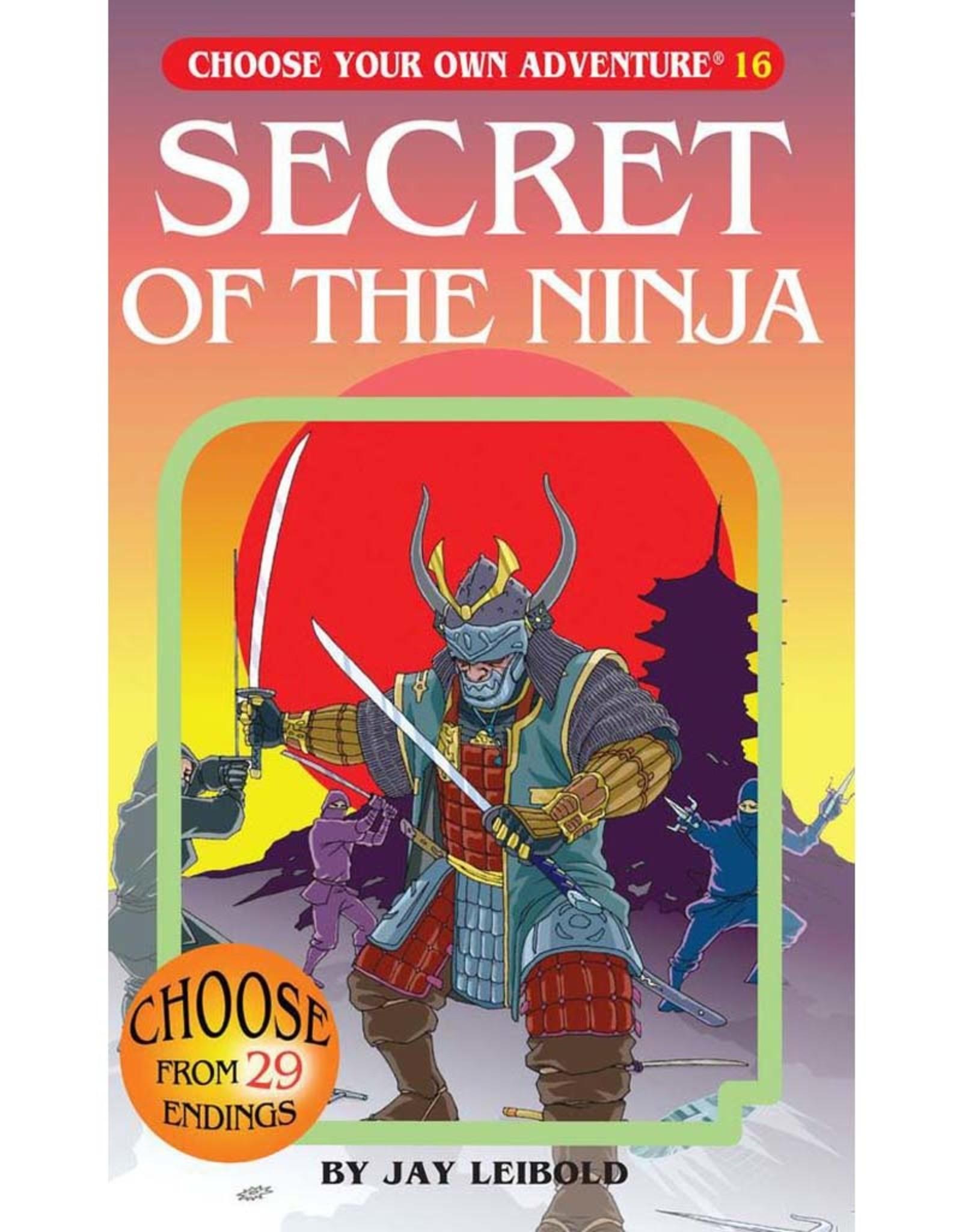ChooseCo CYOA #16 Secret of the Ninja