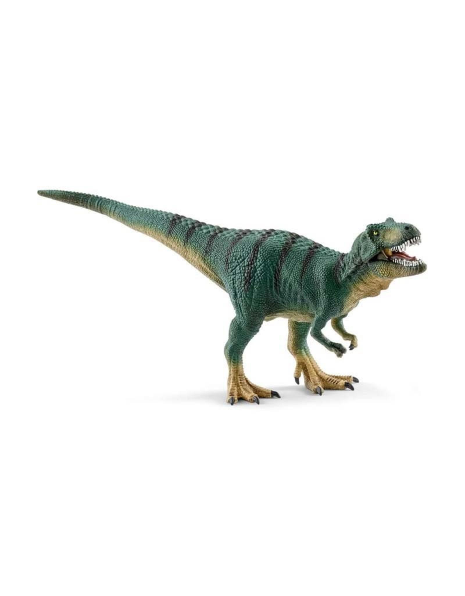 Schleich Schleich Tyrannosaurus Rex Juvenile