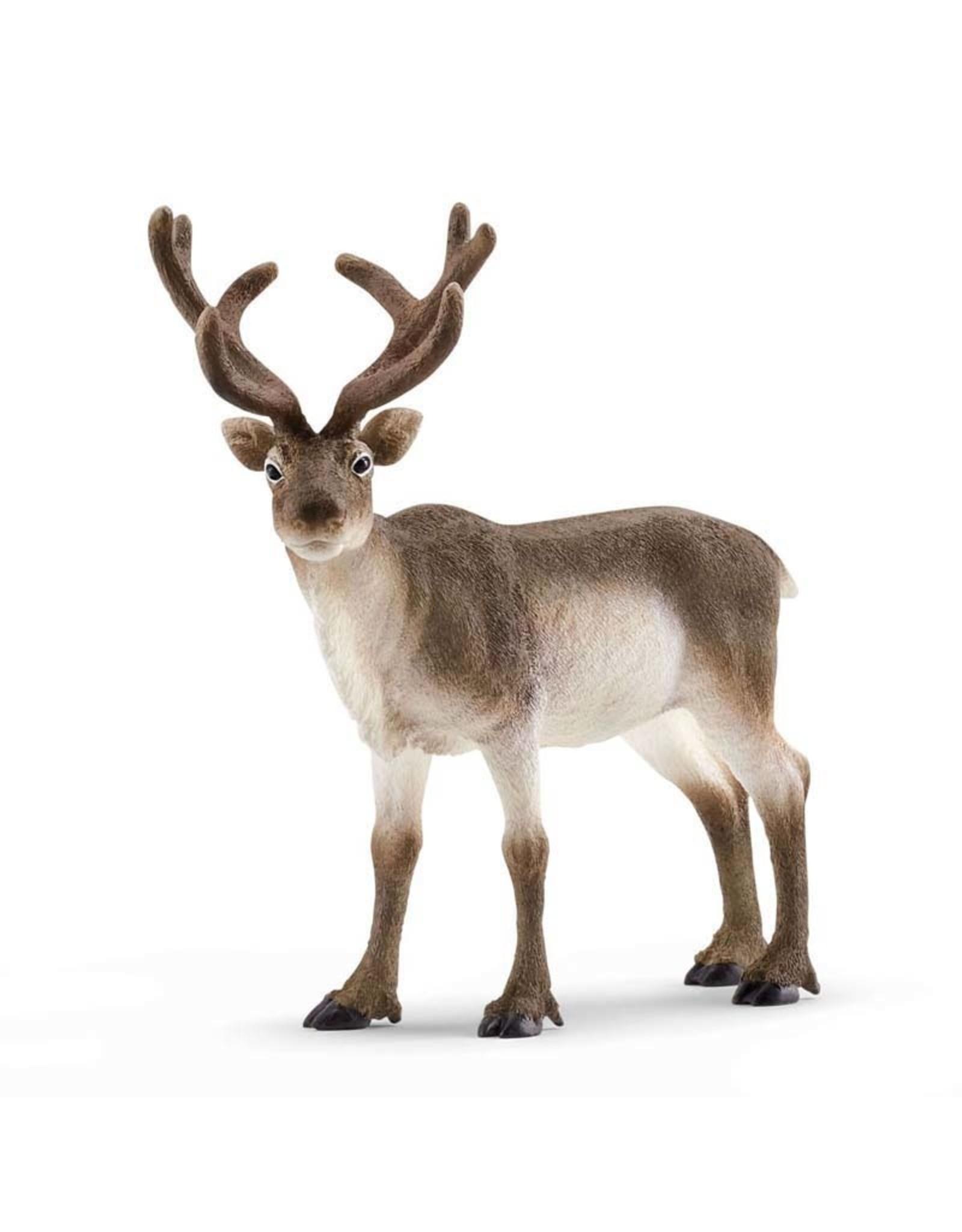Schleich Schleich Reindeer