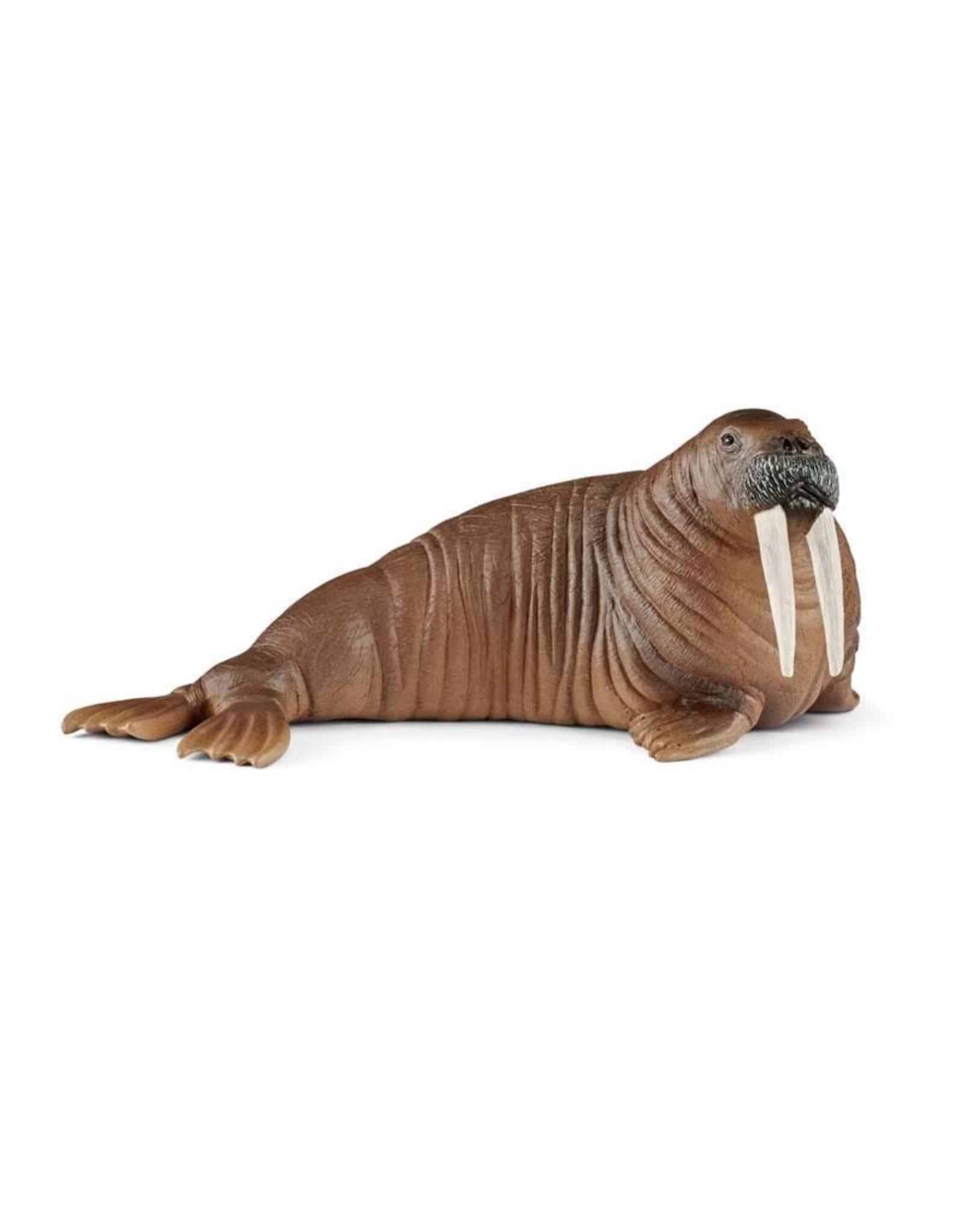 Schleich Schleich Walrus