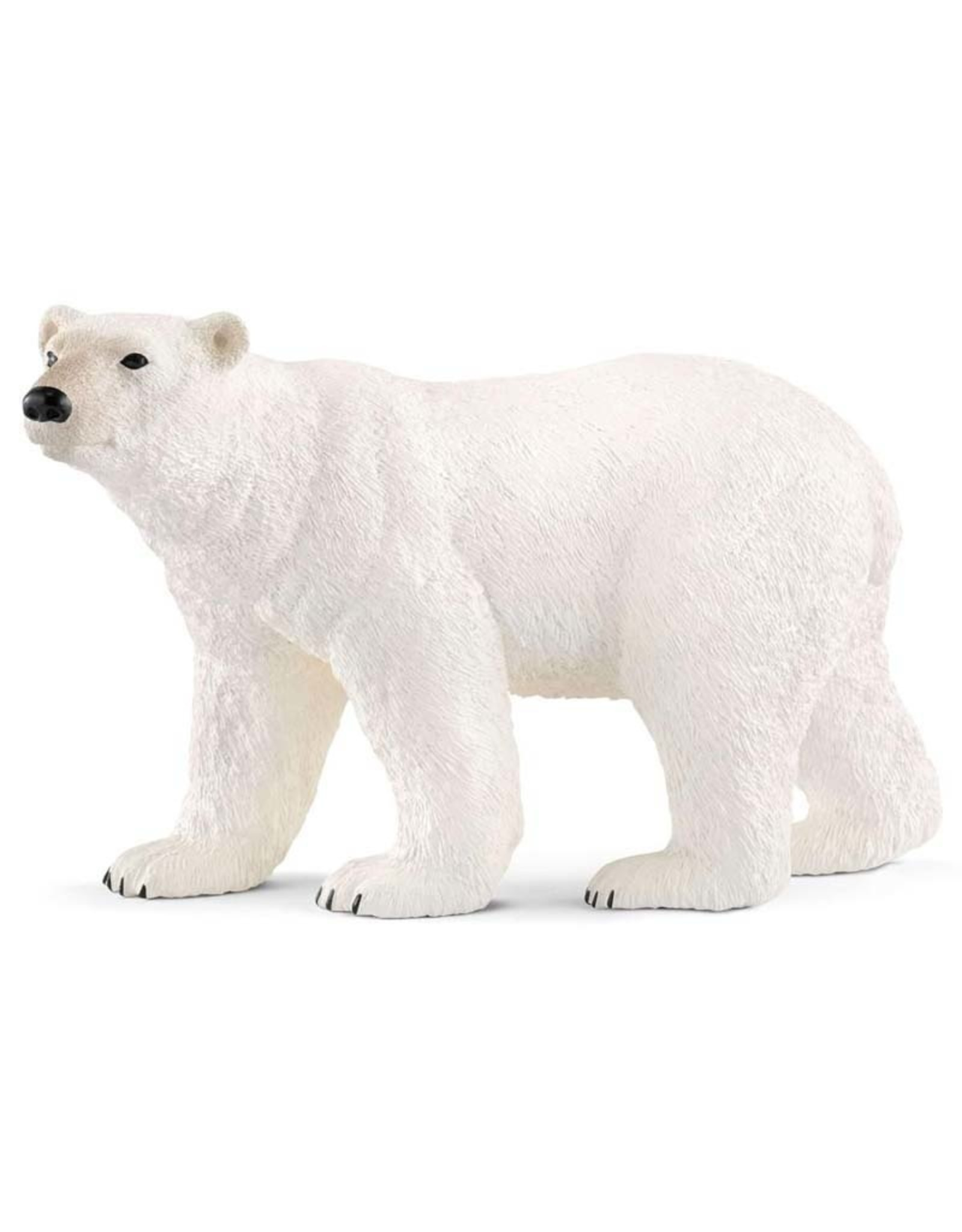 Schleich Schleich Polar Bear New 2018