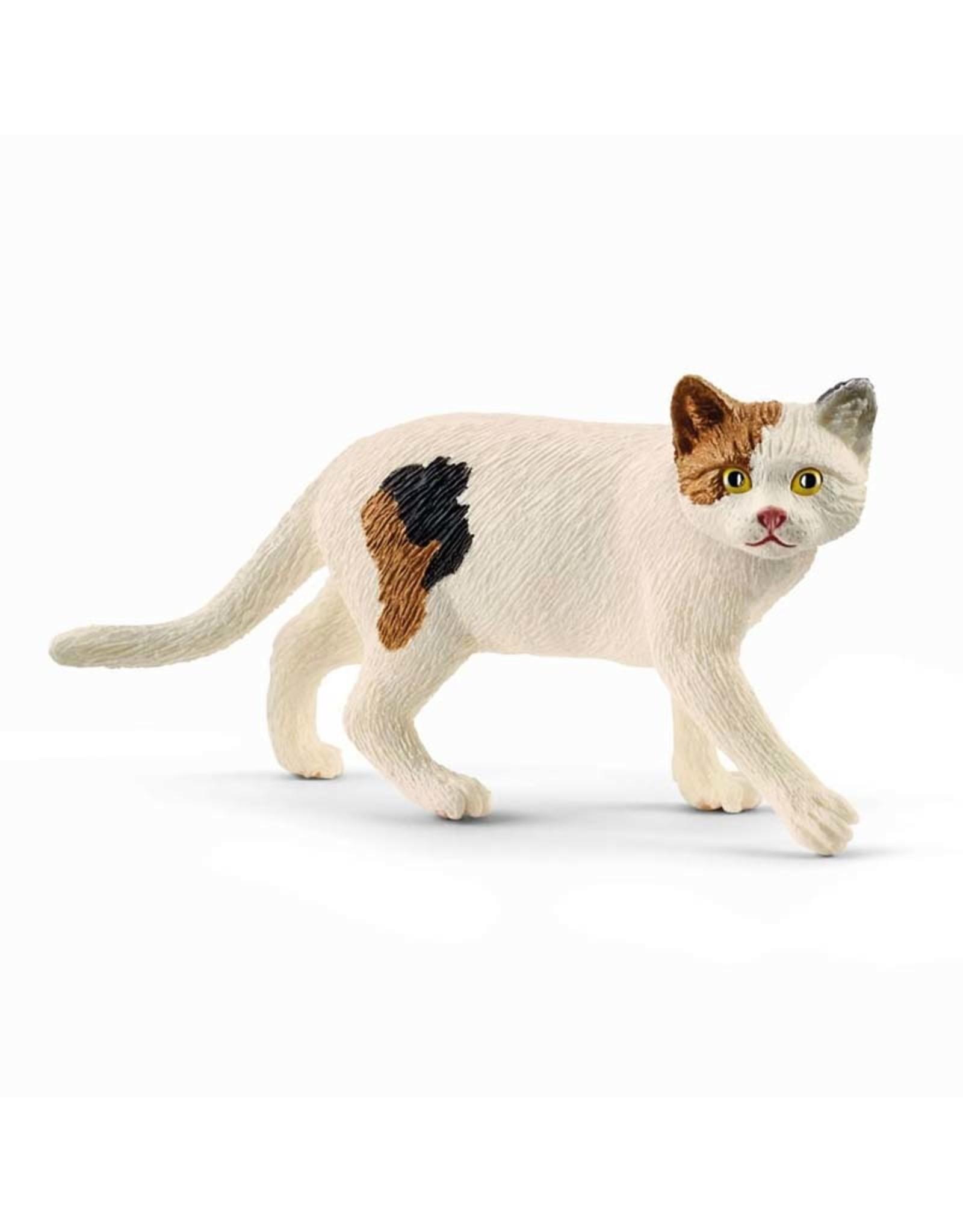 Schleich Schleich American Shorthair Cat