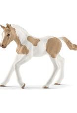 Schleich Schleich Paint horse foal