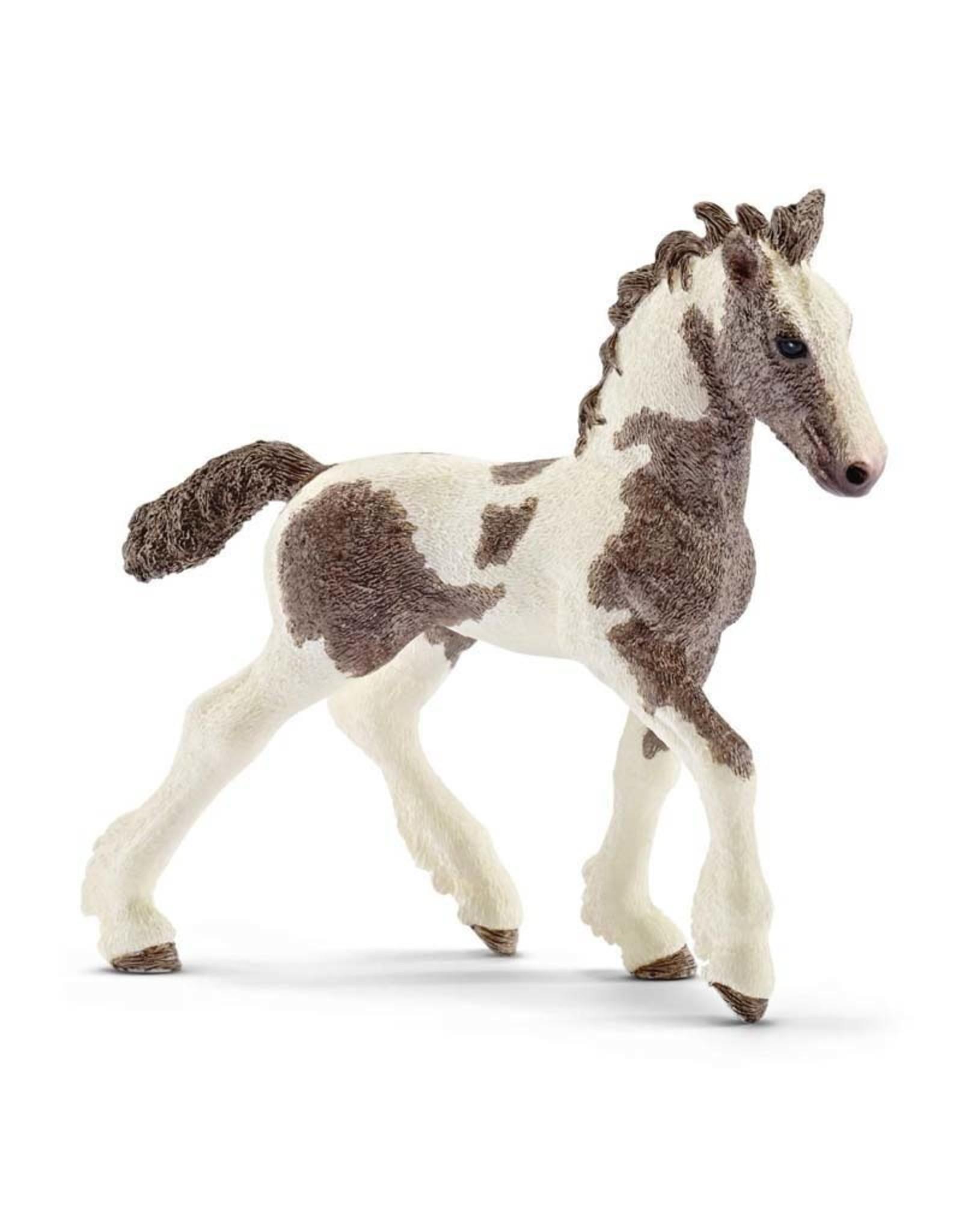 Schleich Schleich Tinker foal