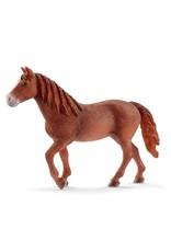 Schleich Schleich Morgan Horse Mare