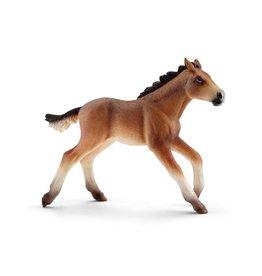 Schleich Schleich Mustang foal
