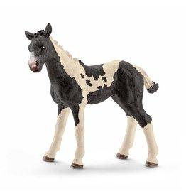 Schleich Schleich Pinto foal