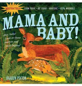 Workman Publishing Co Indestructibles Mama and Baby