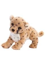 Douglas Chillin'  Cheetah Cub