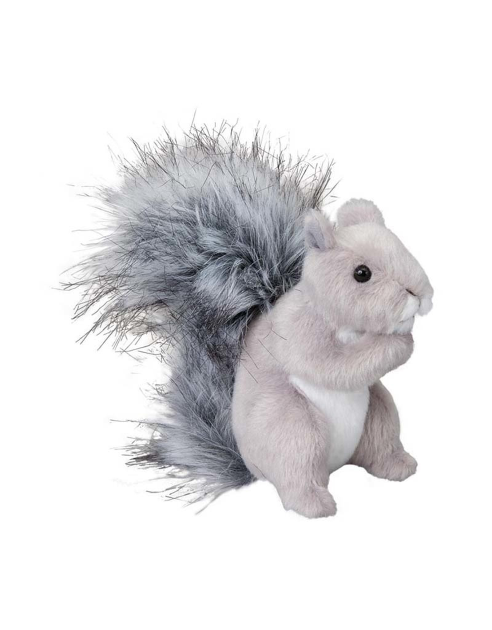 Douglas SHASTA GRAY SQUIRREL